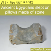 stone pillows wtf fun facts