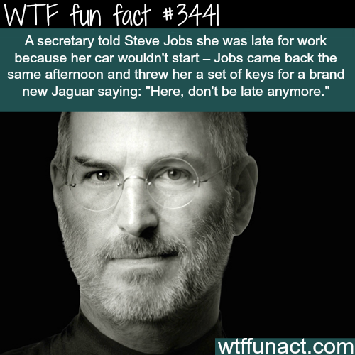 Stories about Steve Jobs -  WTF fun facts