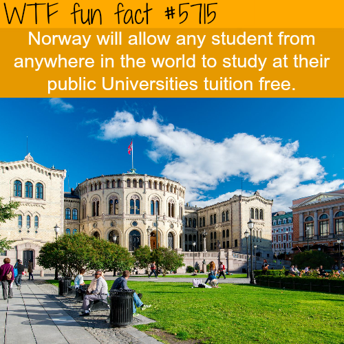 Study in Norway - WTF fun facts