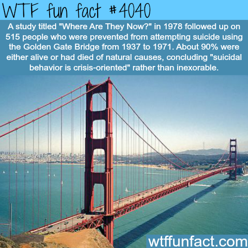 Suicidal behavior is crisis-oriented - WTF fun facts