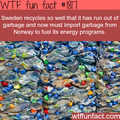 Sweden is the best recycling country - WTF fun facts