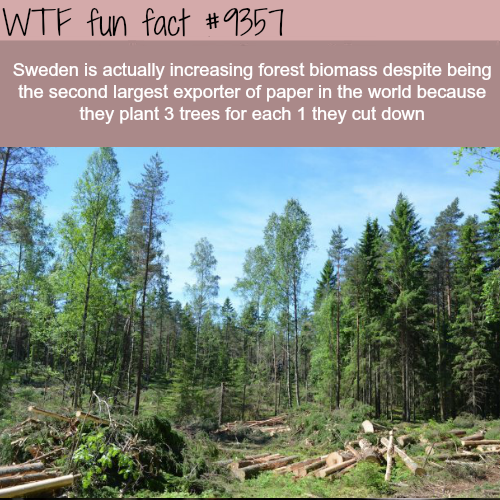 Sweden - WTF fun facts