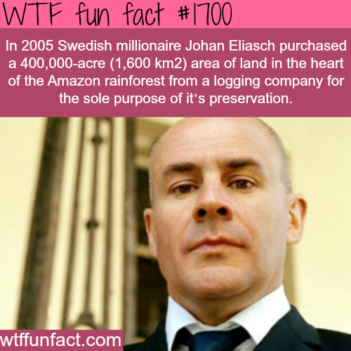 Swedish millionaire Johan Eliasch - WTF fun facts