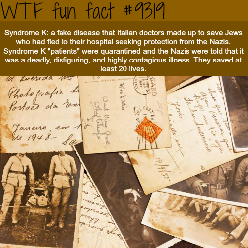 Syndrome K - WTF fun facts