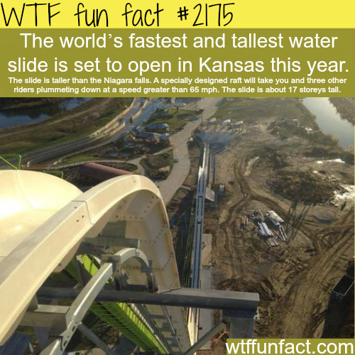Tallest and fastest water slide - WTF fun facts