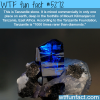 tanzanite stone wtf fun facts