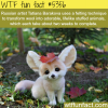 tatiana barakova art work wtf fun facts