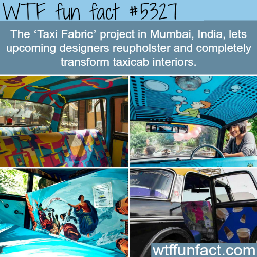Taxi Fabric project in India - WTF fun facts