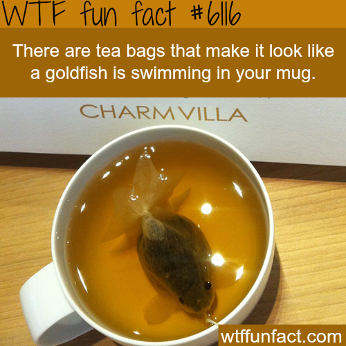 Tea bags that look like a fish - WTF fun facts