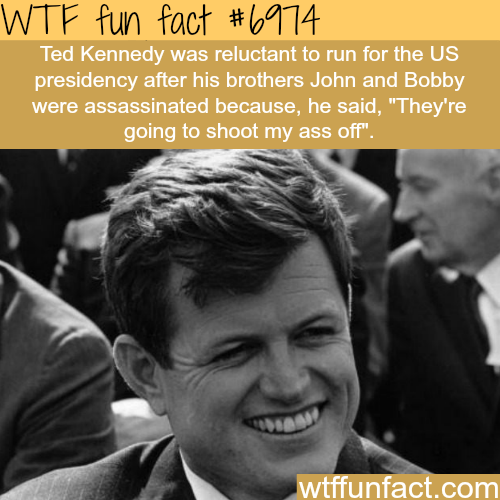 Ted Kennedy - WTF fun fact