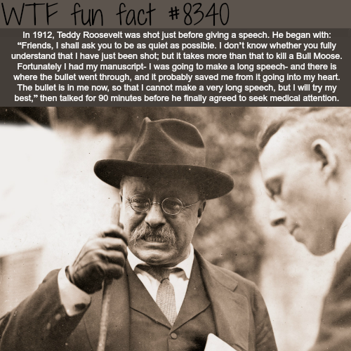 Teddy Roosevelt - WTF fun facts