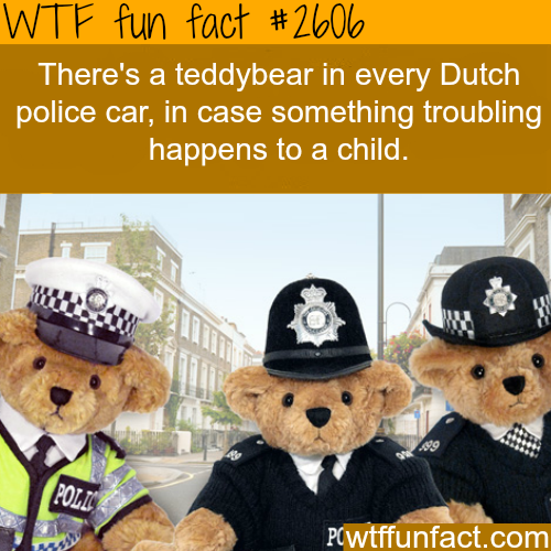 Teddybears in Dutch Police cars - WTF fun facts