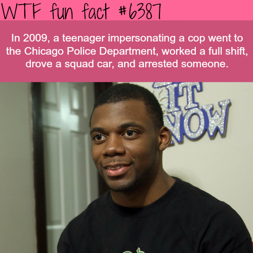 Teenager impersonated a cop and drop a squad car - WTF fun facts