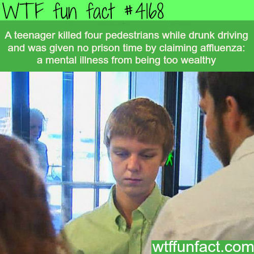 Teenager killed four pedestrians while drunk -  WTF fun facts
