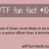 terrorist facts