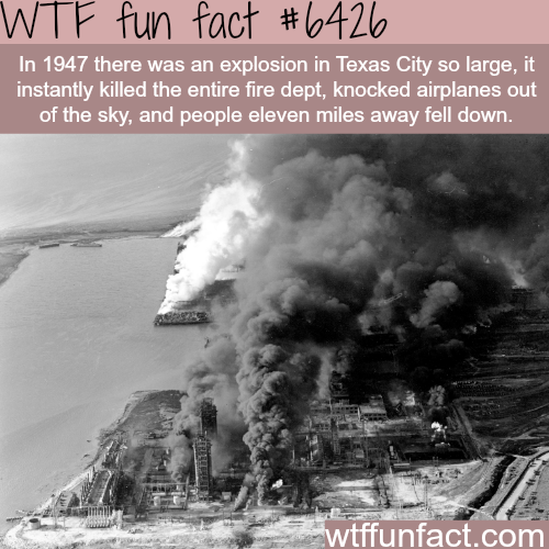 Texas City explosion - WTF fun facts