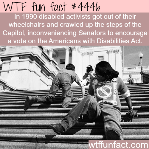 The activists behind the Americans with Disabilities Act -   WTF fun facts