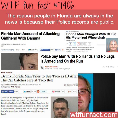 The adventures of Florida Man - FACTS