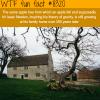 the apple tree that hit isaac newton is still