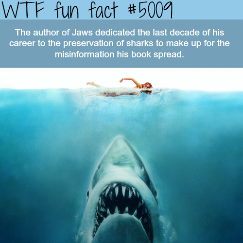 The author of Jaws is trying to save the sharks - WTF fun facts