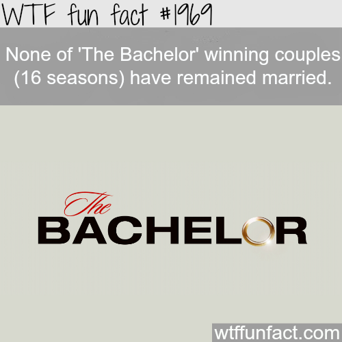 """The Bachelor"" winning couples don't remain married - WTF fun facts"