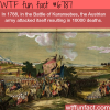 the battle of karansebes wtf fun fact
