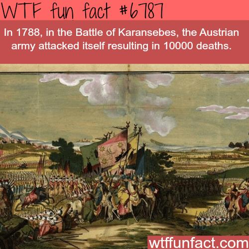 The battle of Karansebes - WTF fun fact