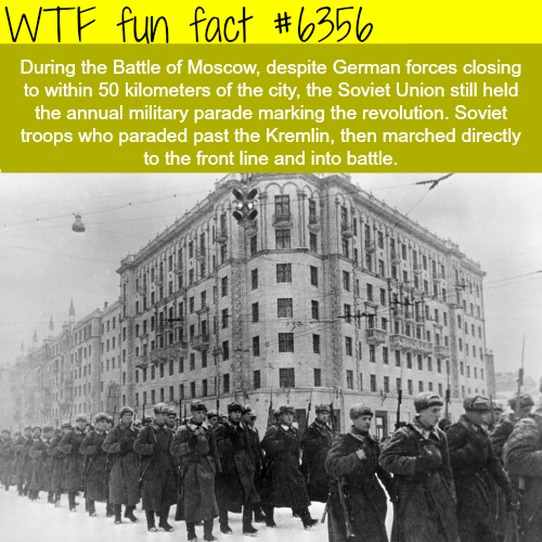 The battle of Moscow - WTF fun facts