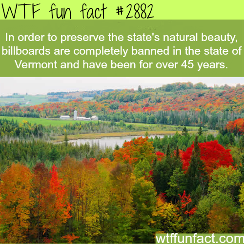 The beauty of Vermont -  WTF fun facts