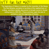 the beginning of history wtf fun facts