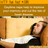 the benefits of daytime naps
