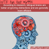 the benefits of knowing two languages wtf fun