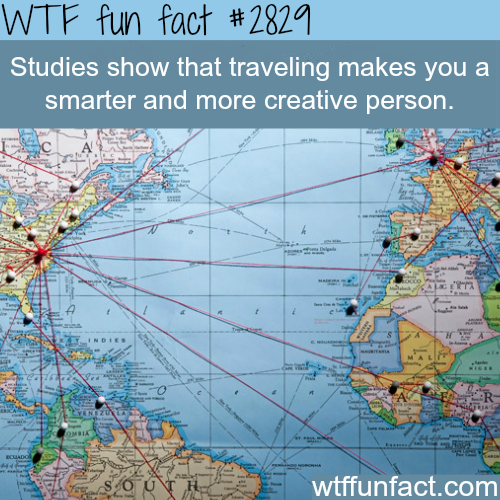 The benefits of travling -  WTF fun facts