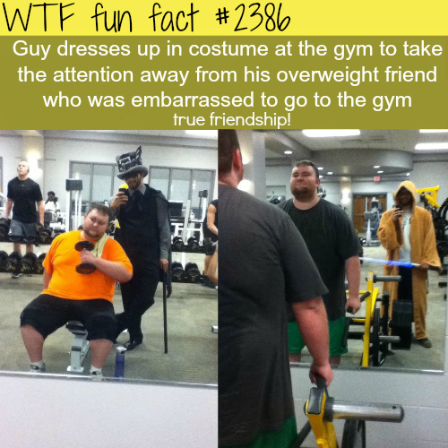the best example of true friendship - WTF fun facts