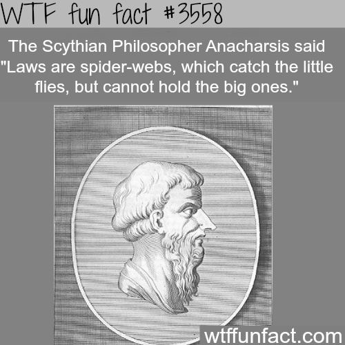 The best quotes about laws and politics - WTF fun facts