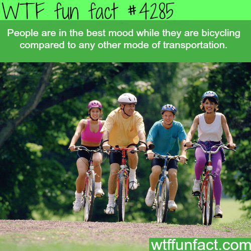 The best way of transportation -  WTF fun facts