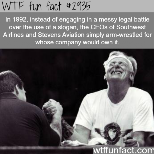 The best way to solve problems with others  -  WTF fun facts