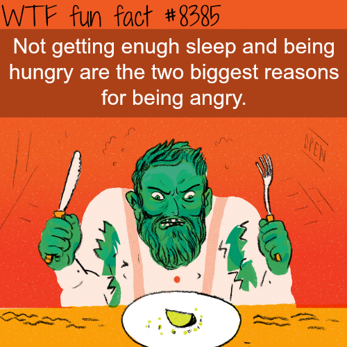 The biggest reasons why you are angry - WTF fun facts