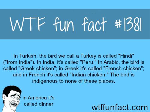 The bird turkey in Turkish.