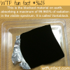 the blackest material on earth
