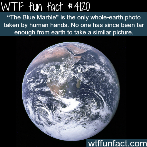 The Blue Marble -  WTF fun facts