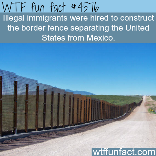 The border fence separating the United States from Mexico -   WTF fun facts