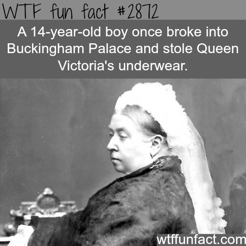 The boy who stole Queen Victoria's underwear -  WTF fun facts