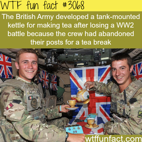 The British tanks have tea -  WTF fun facts