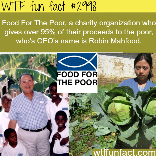 The CEO of food for the poor is Robin Mahfood -  WTF fun facts