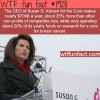 the ceo of susan g komen salary