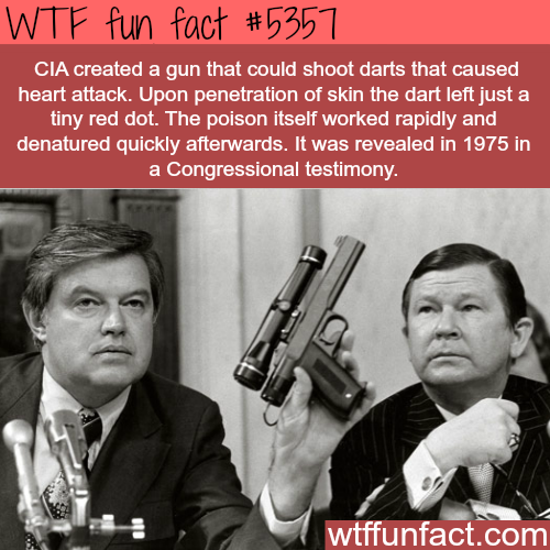 The CIA's dart gun that causes heart attack - WTF fun facts