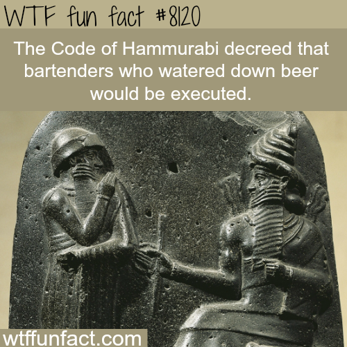 The Code of Hammurabi - WTF fun facts