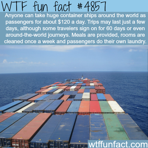 The container ships tourism - WTF fun facts