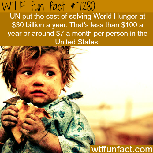 The cost of eliminating World Hunger - WTF fun fact